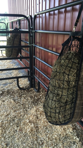 Slow-feed hay bags hung and filled with Bermuda Grass hay.